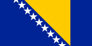 Bosnian and Herzegovinian flag